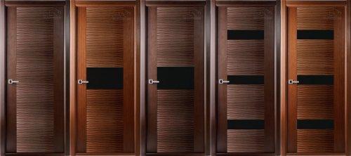 Варианты дверей экошпон